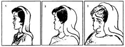 Alte frau kippbilder oder junge Vier Gesichter
